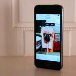 Cómo ocultar (pero no borrar) una foto en iOS 8